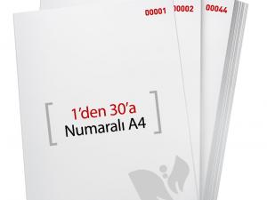 1'den - 30' A Numaralı A4 Kağıt - Xerox