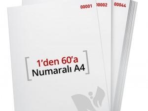 1'den - 60' A Numaralı A4 Kağıt - Xerox